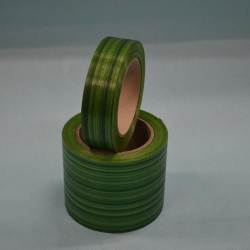Ukrasna traka aspidistra zelena